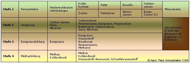 fermenter biogasanlage aufbau